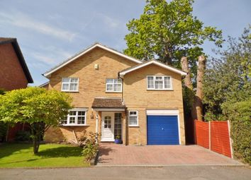 Thumbnail 5 bed detached house for sale in Everglades Avenue, Cowplain, Waterlooville