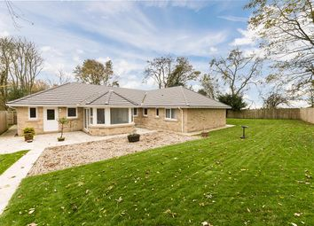 Thumbnail 4 bed detached bungalow for sale in Middle Lodge, Park Road, Swarland, Morpeth, Northumberland