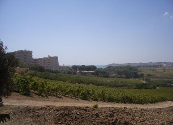 Thumbnail Land for sale in Strada Provinciale 56, Castelvetrano, Trapani, Sicily, Italy