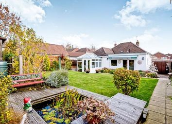 Thumbnail 2 bed bungalow for sale in Waterlooville, Hampshire, England