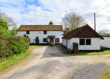 Thumbnail 3 bed detached house for sale in Gissing, Norwich
