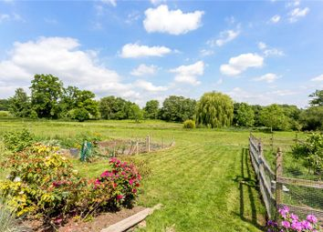 Thumbnail 3 bed semi-detached house for sale in The Street, Compton, Guildford, Surrey