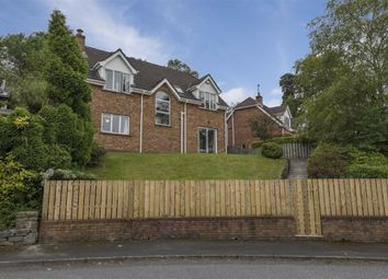 Thumbnail 4 bed detached house to rent in Woodridge, Ballynahinch, Down