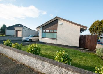 Thumbnail 4 bed detached bungalow to rent in Denhead Crescent, Potterton, Aberdeen