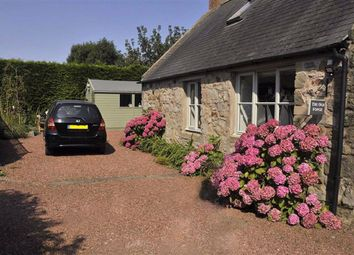 Thumbnail 2 bedroom cottage for sale in Bowsden, Berwick Upon Tweed
