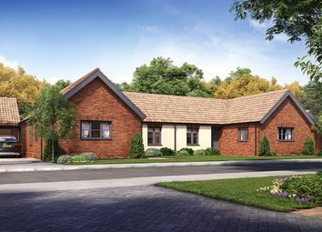 2 bed semi-detached bungalow for sale in Horning Road, Hoveton, Norwich, Norfolk NR12