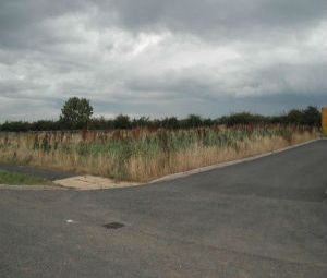Thumbnail Land for sale in Land At Kirkleatham Business Park, Redcar