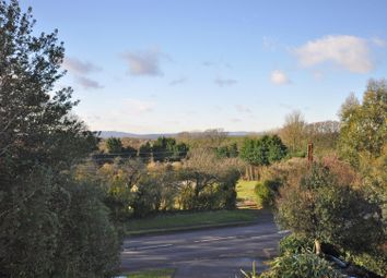 Thumbnail 4 bedroom detached house for sale in Windmill Hill, Hailsham