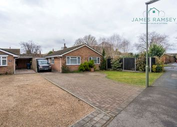 Thumbnail 3 bed detached bungalow for sale in Abbey Gardens, Chertsey