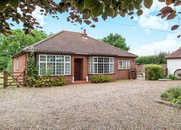 Thumbnail 3 bed detached bungalow for sale in Buxton Road, Hainford, Norwich