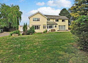 Thumbnail 6 bed detached house for sale in Causey Hill, Hexham