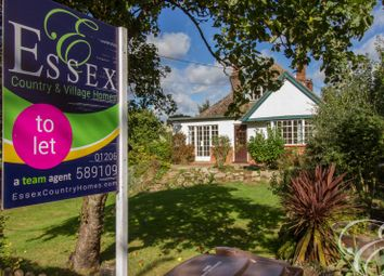 Thumbnail 4 bed bungalow to rent in Shrubland Road, Mistley, Manningtree, Essex
