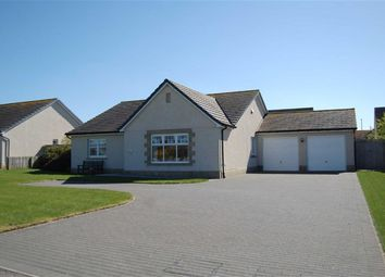 Thumbnail 4 bed detached bungalow for sale in School Brae, Croy, Inverness
