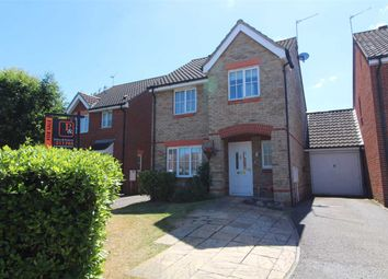 Thumbnail 3 bed link-detached house for sale in Burnet Close, Pinewood, Ipswich