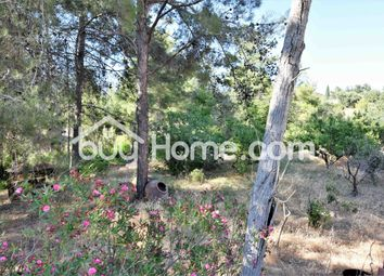 Thumbnail 4 bed detached house for sale in Trimiklini, Limassol, Cyprus
