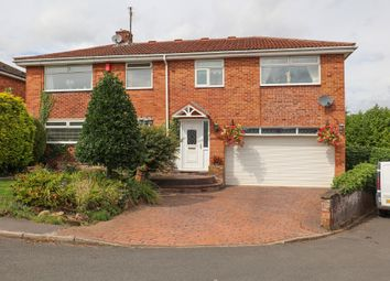 Thumbnail 4 bed detached house for sale in Ambleside Close, Halfway, Sheffield
