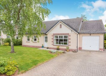 Thumbnail 3 bed bungalow for sale in Finella View, Laurencekirk