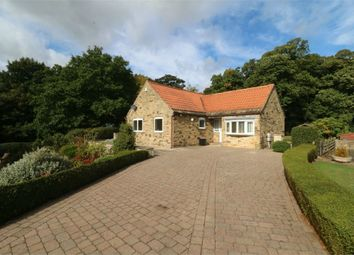 Thumbnail 3 bed detached bungalow to rent in Lady Mary View, Hickleton, Doncaster, South Yorkshire