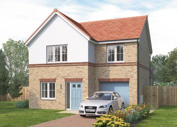 "Thumbnail 3 bed detached house for sale in ""The Melton"" at Wellfield Road North, Wingate"