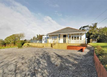 Thumbnail 3 bed detached bungalow for sale in Bridgerule, Holsworthy, Devon