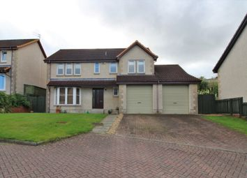 Thumbnail 5 bedroom detached house to rent in Mckell Court, Falkirk