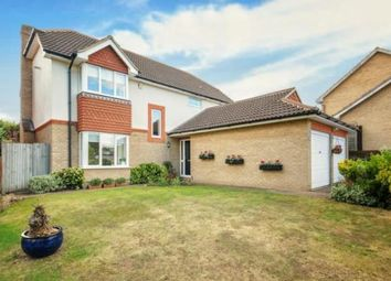 Thumbnail 4 bedroom detached house for sale in Athelstan Way, Orpington
