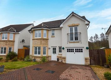 Thumbnail 4 bed detached house to rent in Sandpiper Meadow, Alloa