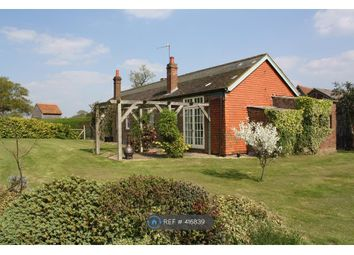 Thumbnail 3 bed bungalow to rent in Rusper Road, Newdigate