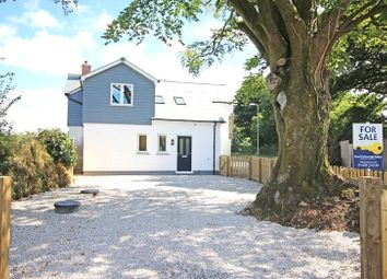 Thumbnail 4 bedroom detached house to rent in Halwill, Beaworthy
