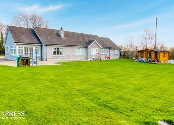 Thumbnail 4 bed detached bungalow for sale in Terryhoogan Road, Scarva, Craigavon, County Armagh