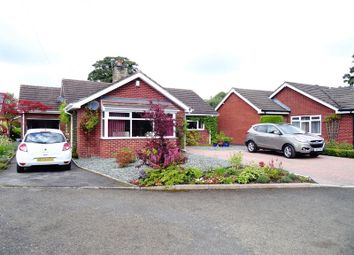 Thumbnail 3 bed detached bungalow for sale in Fallibroome Close, Macclesfield