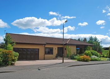 Thumbnail 5 bed bungalow for sale in Millar Place, Falkirk