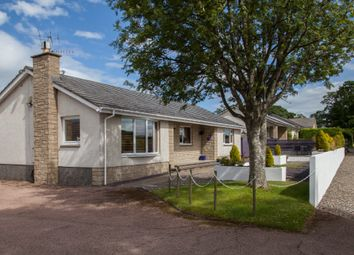 4 bed detached bungalow for sale in Redgorton, Perth, Perthshire PH1