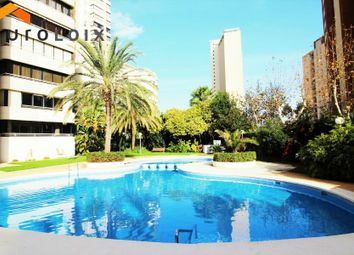 Thumbnail 1 bed apartment for sale in Avenida Europa, Benidorm, Spain
