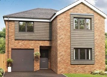 Thumbnail 4 bed detached house for sale in Elm Gardens, Middleton St George, Darlington