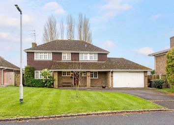 Thumbnail 4 bed property to rent in Montagu Road, Datchet, Slough