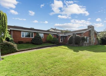 Thumbnail 5 bed detached bungalow for sale in Whitehall Drive, Elburton, Plymouth, Devon