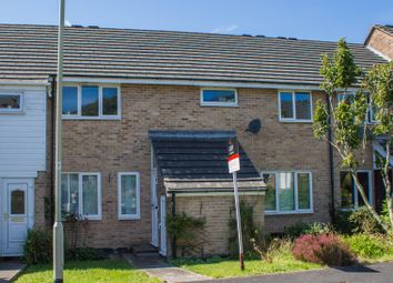 Thumbnail 3 bed terraced house for sale in Friars Walk, Whitchurch, Tavistock