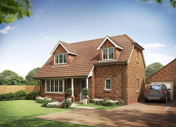 Thumbnail 3 bed bungalow for sale in Boxgrove, Chichester