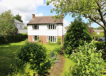 Thumbnail 5 bed detached house to rent in Stepney Grove, Scarborough