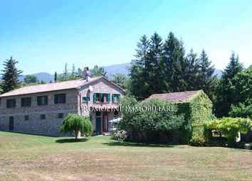 Thumbnail 5 bed farmhouse for sale in Sansepolcro, Tuscany, Italy
