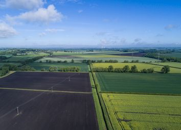 Thumbnail Farm for sale in Westfield Road, Cholsey, Wallingford