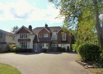 Thumbnail 6 bed detached house to rent in Horsham Road, Cranleigh