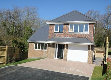 Thumbnail 5 bed detached house for sale in Shining Cliff, Hastings, East Sussex