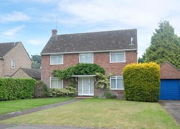 Thumbnail 4 bed detached house to rent in Newbury, Berkshire
