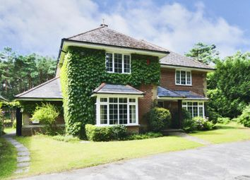Thumbnail 4 bedroom detached house to rent in St Leonards, Ringwood
