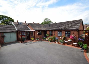 Thumbnail 4 bed detached bungalow for sale in Mount Pleasant, Ketley Bank, Telford, Shropshire