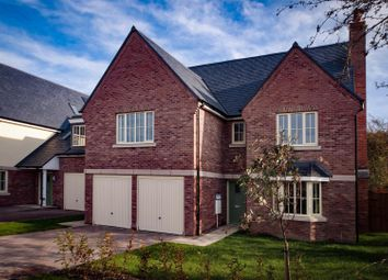 Thumbnail 6 bed detached house for sale in The Falcon, Heyford Meadows, Hankelow