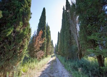 Thumbnail Property for sale in Castelletto, San Giovanni D'asso, Abruzzo