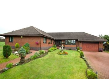 Thumbnail 4 bed detached house to rent in Wishaw